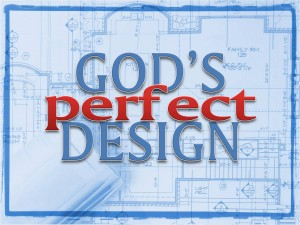 Gods Design 01